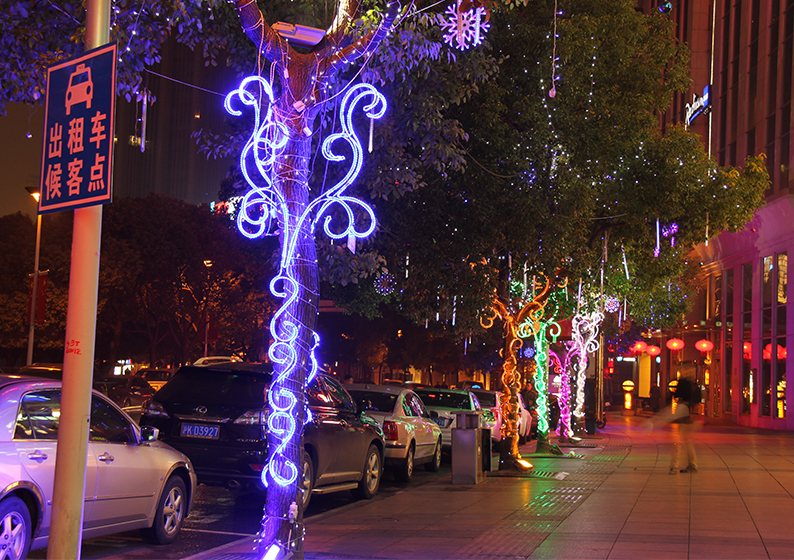 with light decorated Tree in shanghai