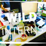 WILD Interns – WILD Stories