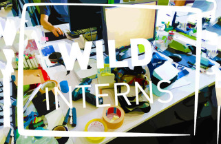 WILD interns | WILDDESIGN